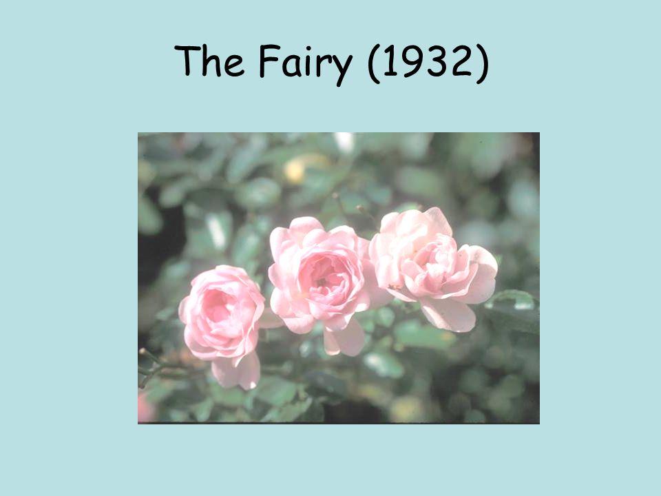 The Fairy (1932)