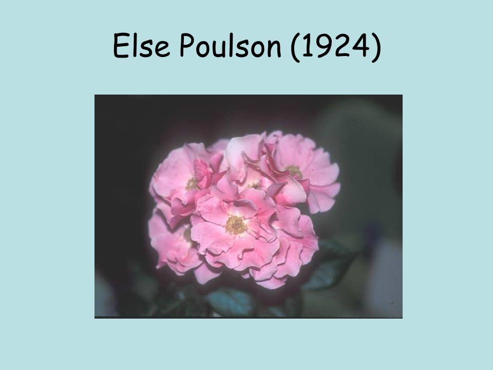 Else Poulson (1924)