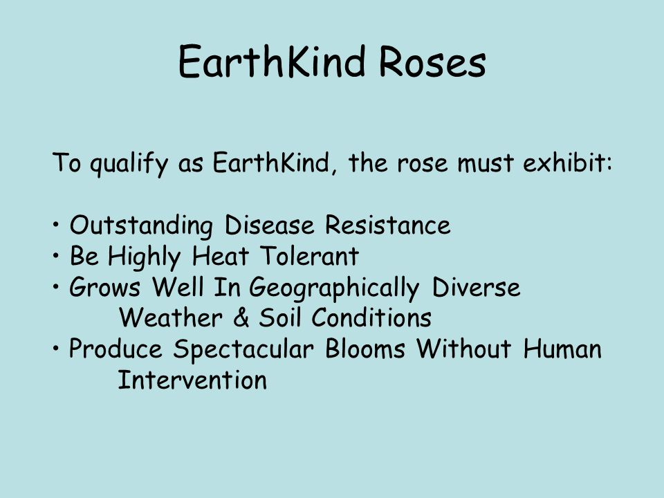 EarthKind Roses To qualify as EarthKind, the rose must exhibit: Outstanding Disease Resistance Be Highly Heat Tolerant Grows Well In Geographically Diverse Weather & Soil Conditions Produce Spectacular Blooms Without Human Intervention
