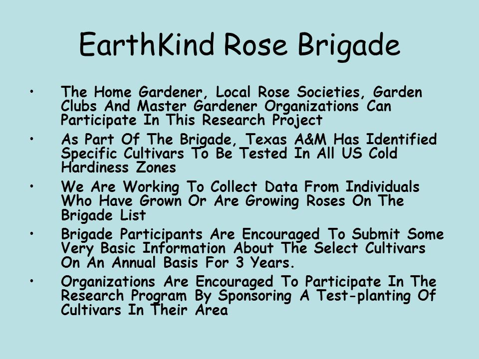 EarthKind Rose Brigade The Home Gardener, Local Rose Societies, Garden Clubs And Master Gardener Organizations Can Participate In This Research Project As Part Of The Brigade, Texas A&M Has Identified Specific Cultivars To Be Tested In All US Cold Hardiness Zones We Are Working To Collect Data From Individuals Who Have Grown Or Are Growing Roses On The Brigade List Brigade Participants Are Encouraged To Submit Some Very Basic Information About The Select Cultivars On An Annual Basis For 3 Years.
