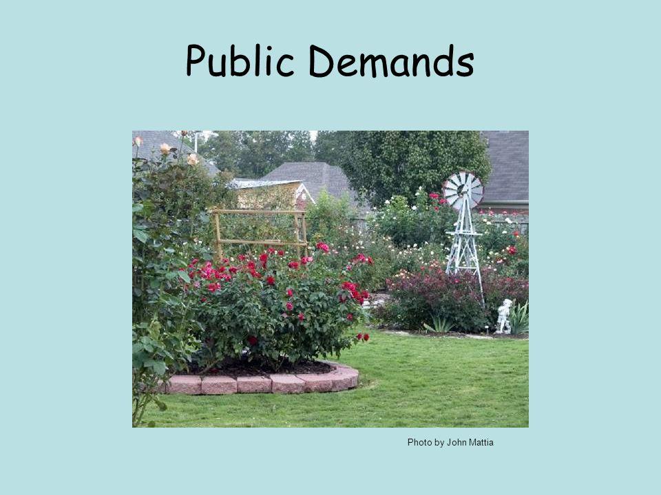 Public Demands Photo by John Mattia