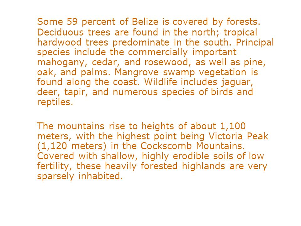 Some 59 percent of Belize is covered by forests. Deciduous trees are found in the north; tropical hardwood trees predominate in the south. Principal s