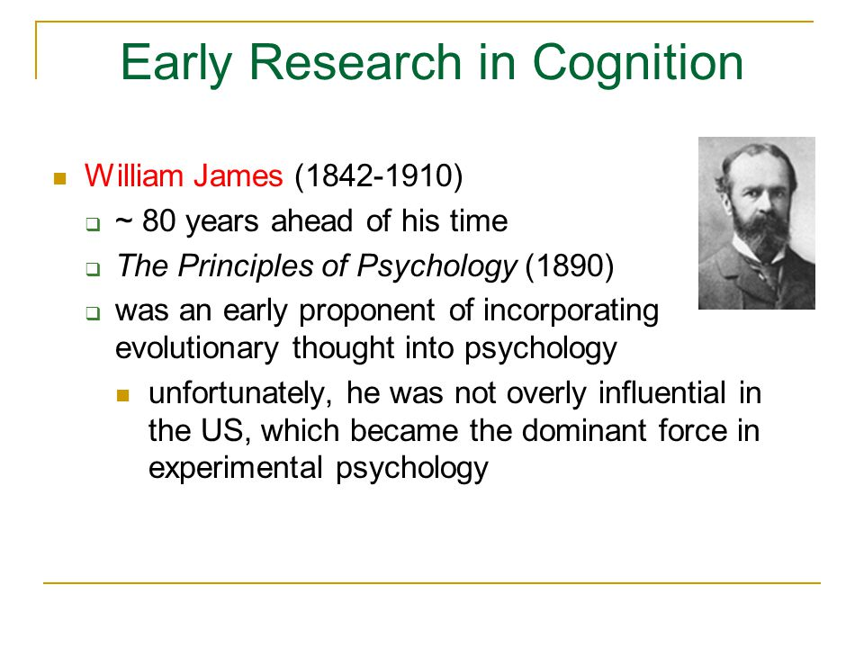 Early Research in Cognition William James (1842-1910)  ~ 80 years ahead of his time  The Principles of Psychology (1890)  was an early proponent of incorporating evolutionary thought into psychology unfortunately, he was not overly influential in the US, which became the dominant force in experimental psychology
