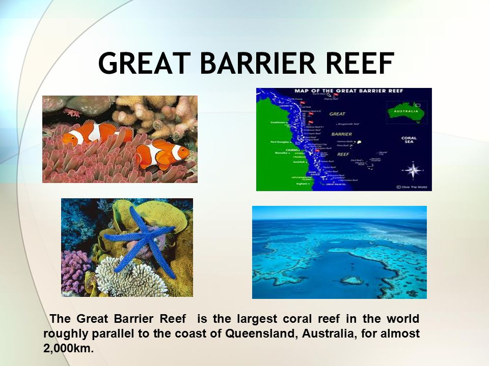 GREAT BARRIER REEF The Great Barrier Reef is the largest coral reef in the world roughly parallel to the coast of Queensland, Australia, for almost 2,000km.
