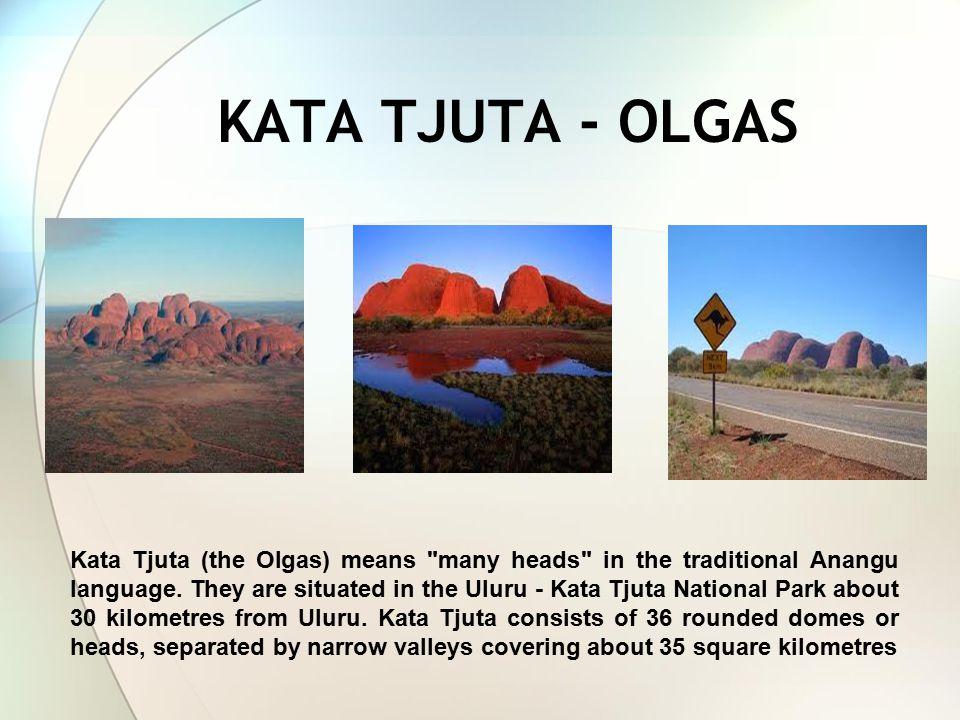 KATA TJUTA - OLGAS Kata Tjuta (the Olgas) means many heads in the traditional Anangu language.