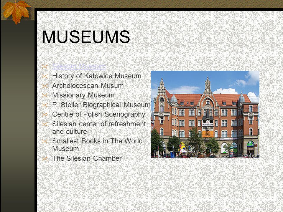 MUSEUMS  Silesian Museum Silesian Museum  History of Katowice Museum  Archdiocesean Musum  Missionary Museum  P. Steller Biographical Museum  Ce