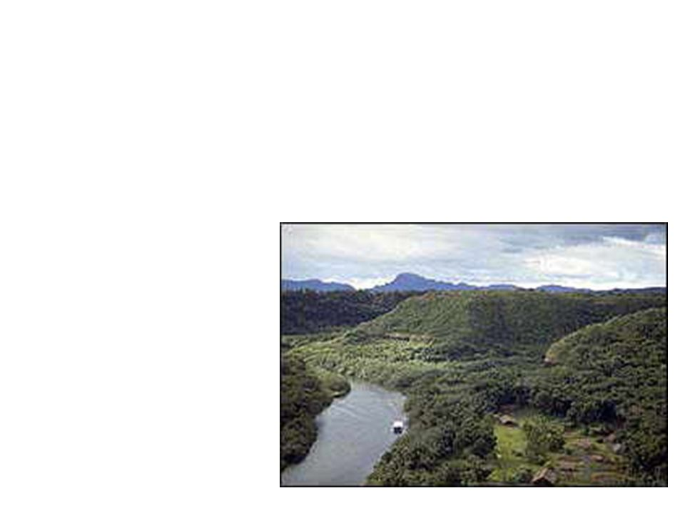 64  The Amazon Rain Forest covers more than a billion acres of northern South America.