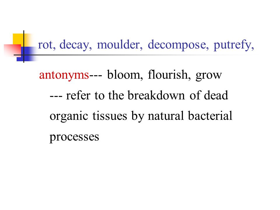 rot, decay, moulder, decompose, putrefy, antonyms--- bloom, flourish, grow --- refer to the breakdown of dead organic tissues by natural bacterial pro