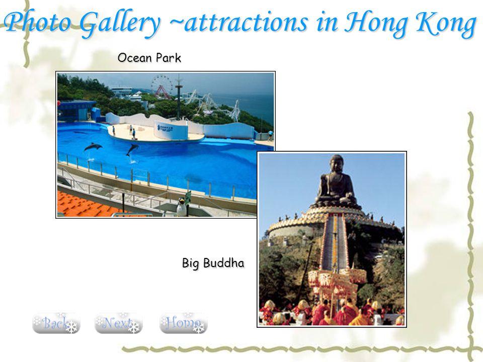 Ocean Park Big Buddha