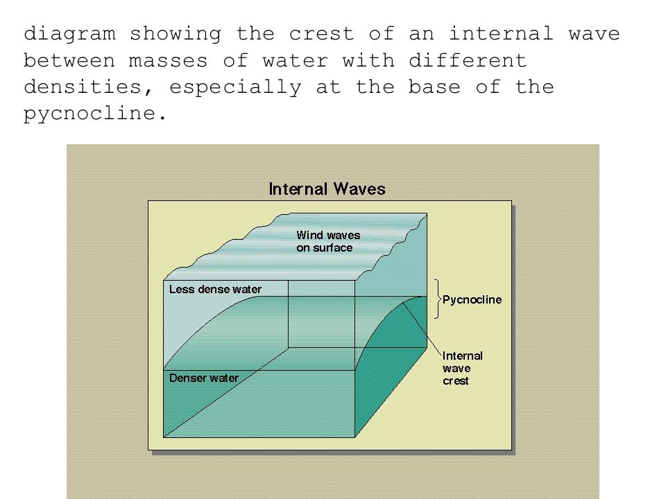 diagram showing the crest of an internal wave between masses of water with different densities, especially at the base of the pycnocline.