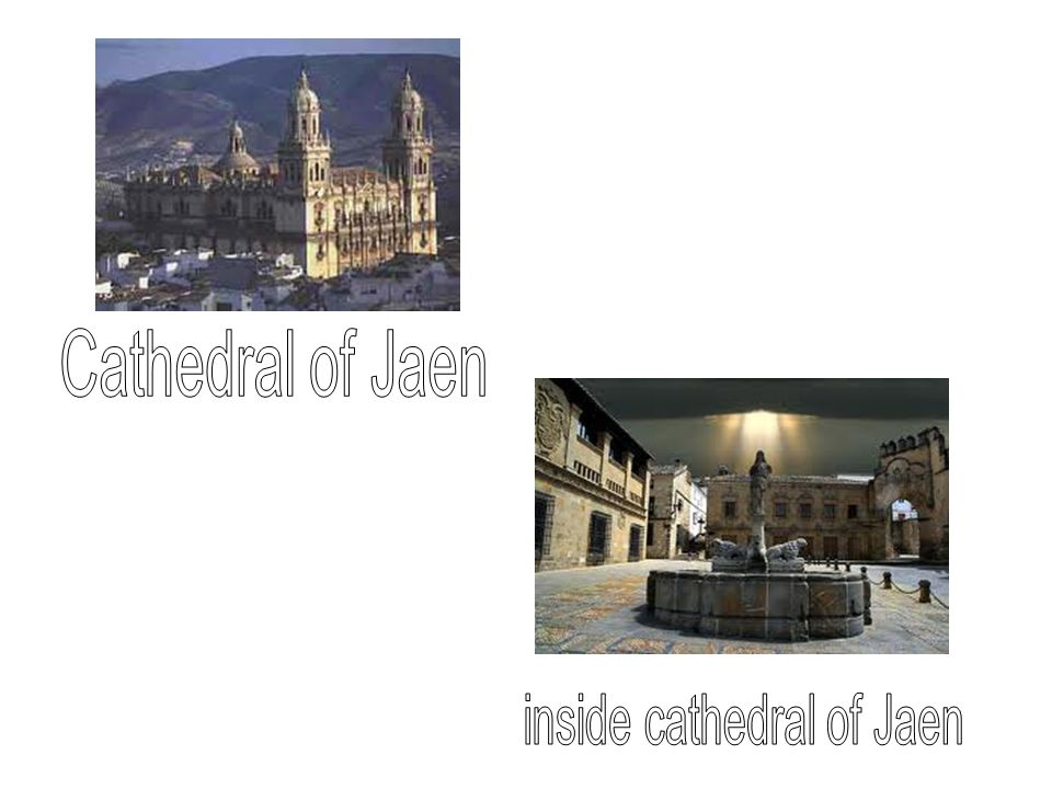 Day 5: Jaen is the world´s leading producer of olive oil and produces about 60% of the Spanish oil production.