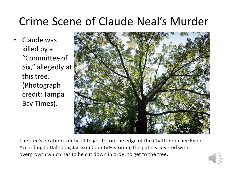 Crime Scene of Claude Neal's Murder Claude was killed by a Committee of Six, allegedly at this tree.