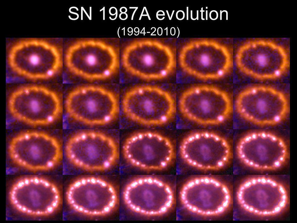 SN 1987A evolution (1994-2010)