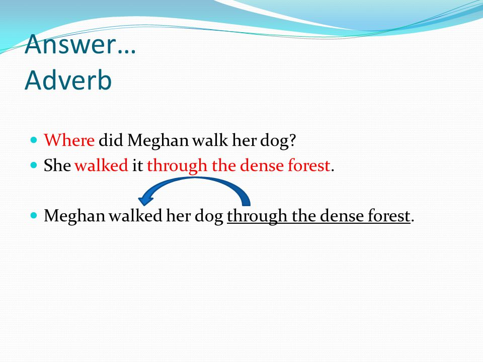 Answer… Adverb Where did Meghan walk her dog? She walked it through the dense forest. Meghan walked her dog through the dense forest.