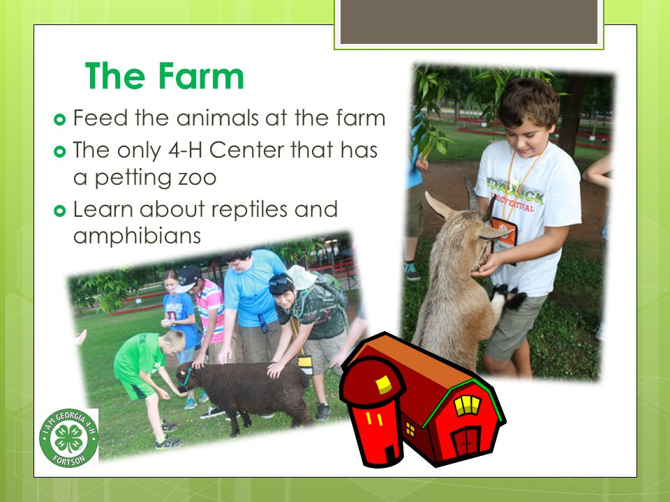 The Farm  Feed the animals at the farm  The only 4-H Center that has a petting zoo  Learn about reptiles and amphibians