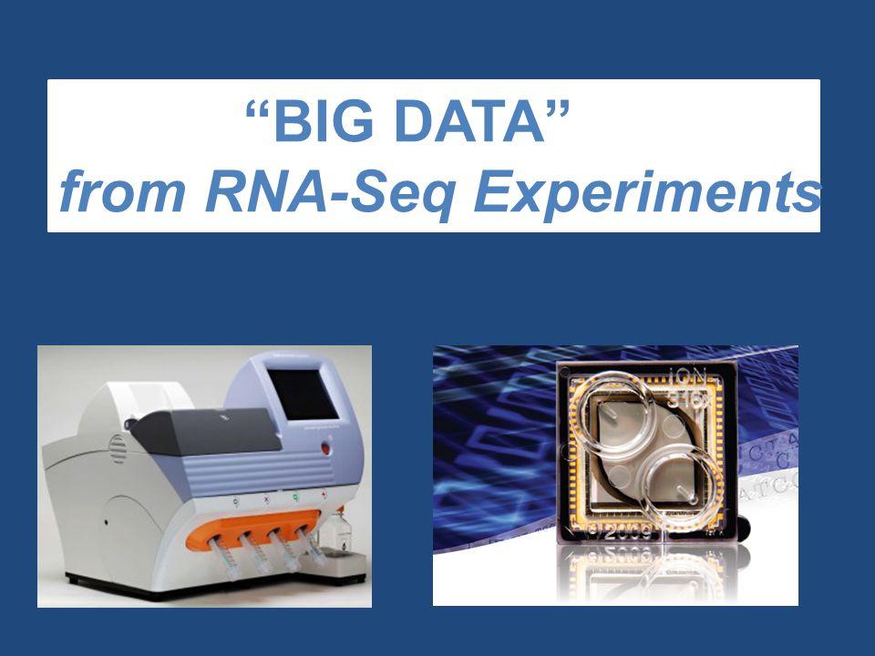 BIG DATA from RNA-Seq Experiments