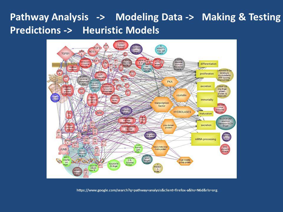 https://www.google.com/search q=pathway+analysis&client=firefox-a&hs=N6d&rls=org.
