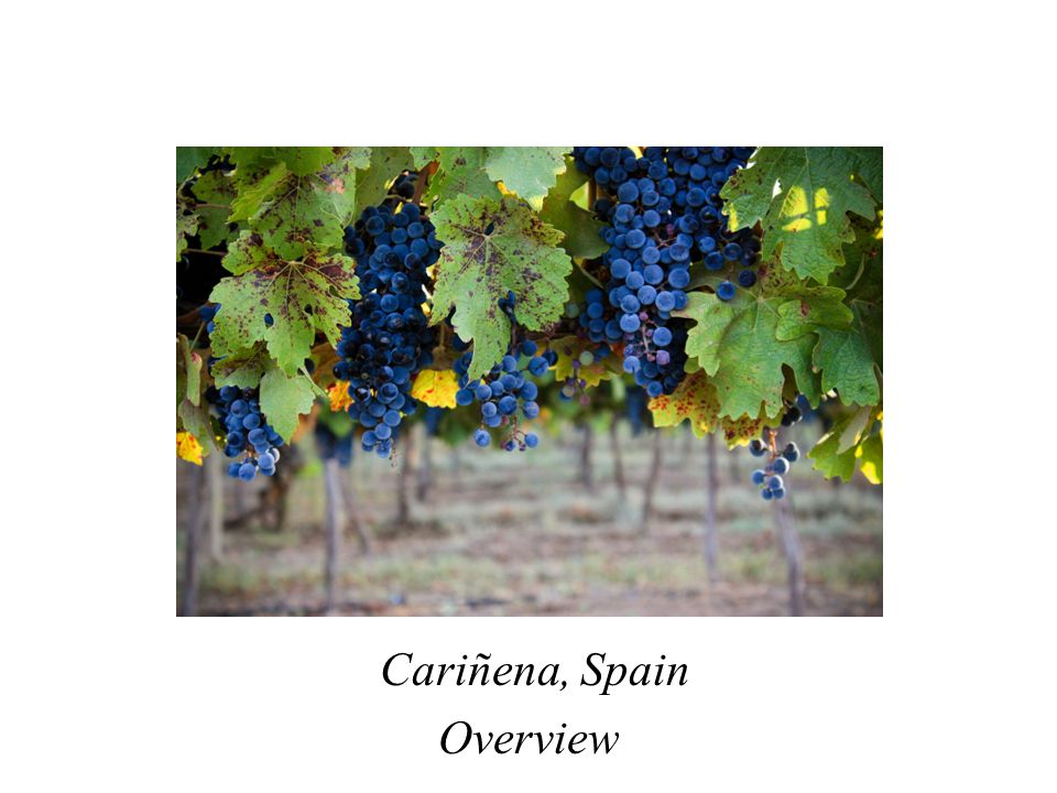 Cariñena, Spain Overview