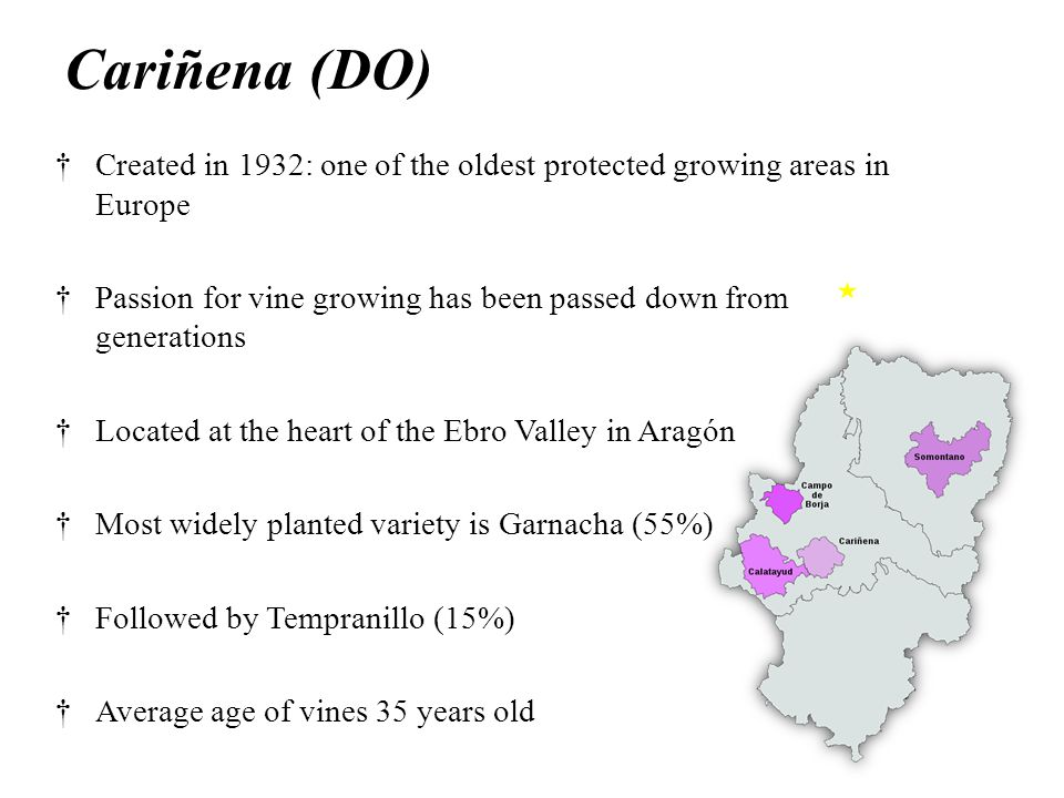 Cariñena (DO) †Created in 1932: one of the oldest protected growing areas in Europe †Passion for vine growing has been passed down from generations †Located at the heart of the Ebro Valley in Aragón †Most widely planted variety is Garnacha (55%) †Followed by Tempranillo (15%) †Average age of vines 35 years old