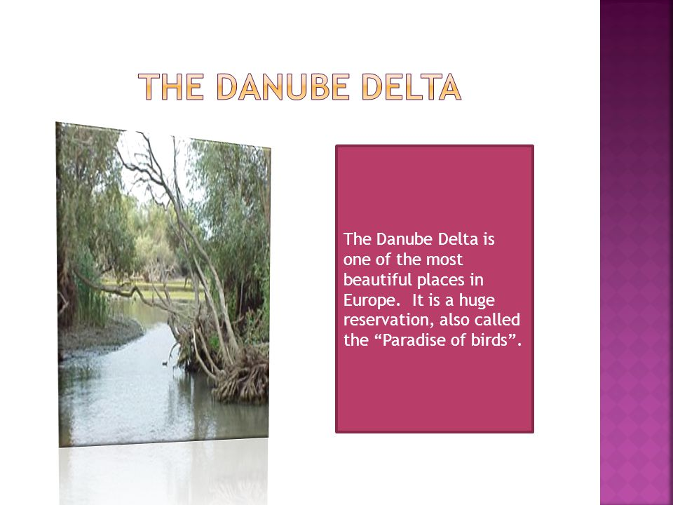 The Danube Delta is one of the most beautiful places in Europe.