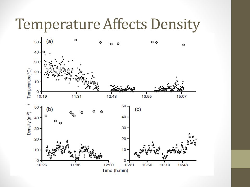 Temperature Affects Density