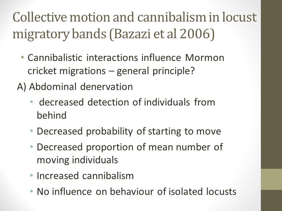 Collective motion and cannibalism in locust migratory bands (Bazazi et al 2006) Cannibalistic interactions influence Mormon cricket migrations – general principle.