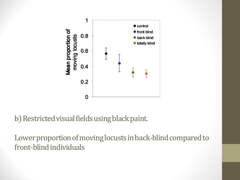 b) Restricted visual fields using black paint.