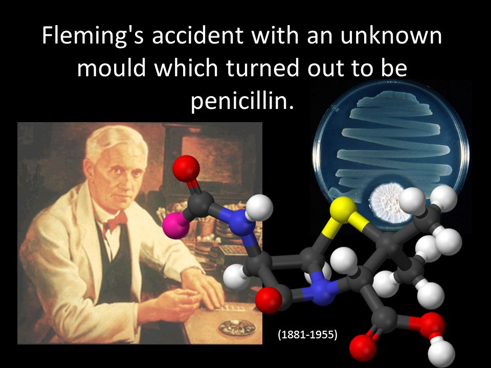 Fleming's accident with an unknown mould which turned out to be penicillin. (1881-1955)