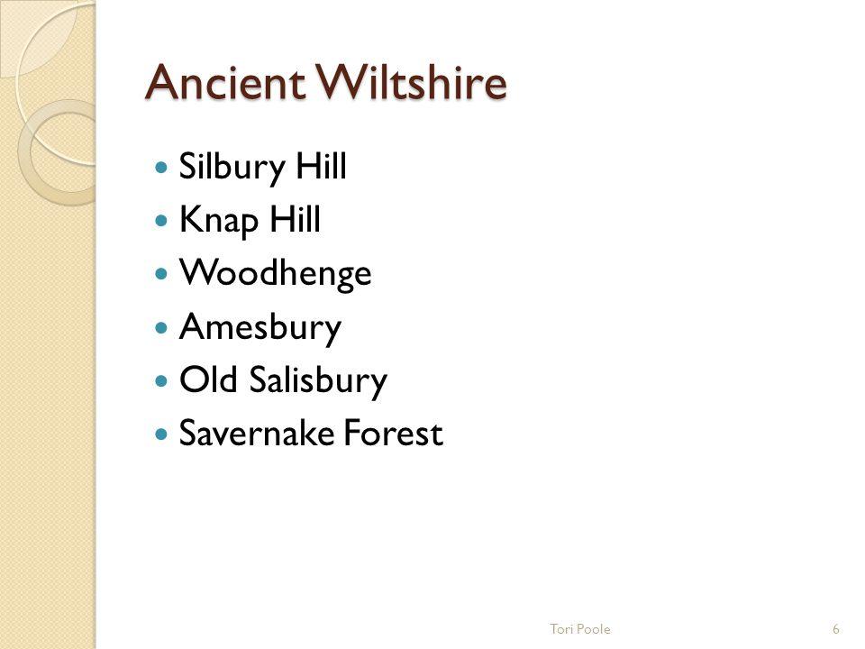 Ancient Stone Circles Stonehenge Avebury The Sanctuary 5Tori Poole