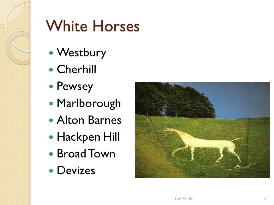 Ancient Wiltshire Silbury Hill Knap Hill Woodhenge Amesbury Old Salisbury Savernake Forest 6Tori Poole