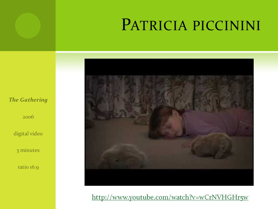 P ATRICIA PICCININI The Gathering 2006 digital video 3 minutes ratio 16:9 http://www.youtube.com/watch?v=wCrNVHGHr5w