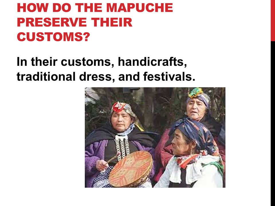 HOW DO THE MAPUCHE PRESERVE THEIR CUSTOMS.