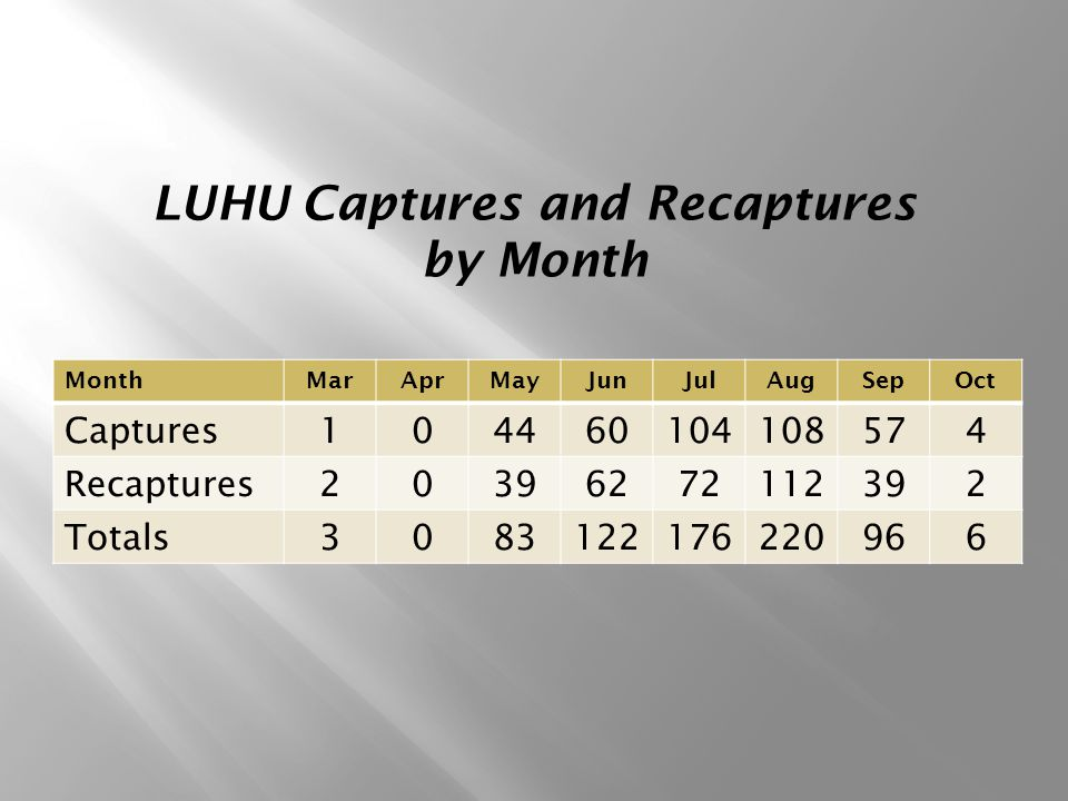 MonthMarAprMayJunJulAugSepOct Captures104460104108574 Recaptures20396272112392 Totals3083122176220966 LUHU Captures and Recaptures by Month