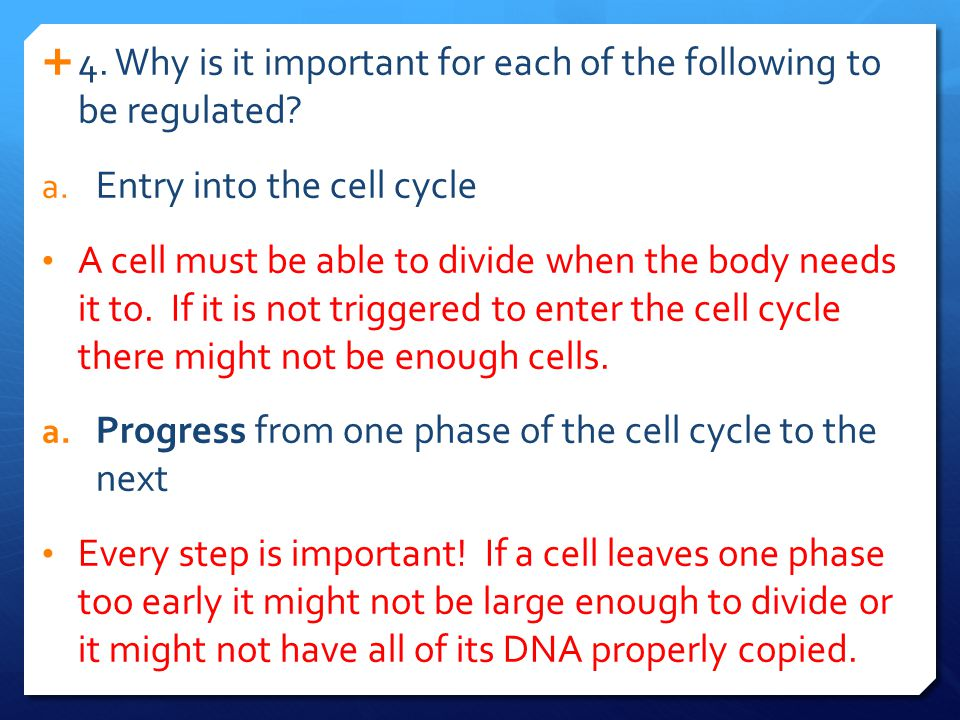  2.What kinds of factors regulate a cell's progress through the cell cycle.