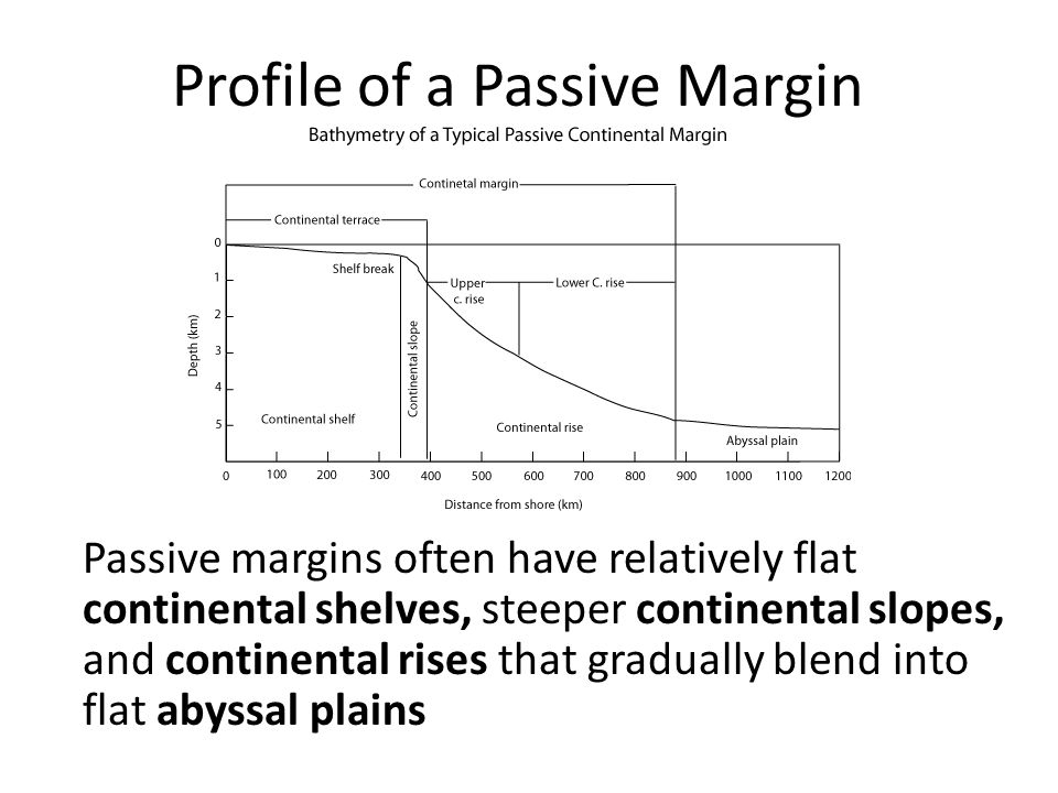 Profile of a Passive Margin Passive margins often have relatively flat continental shelves, steeper continental slopes, and continental rises that gradually blend into flat abyssal plains
