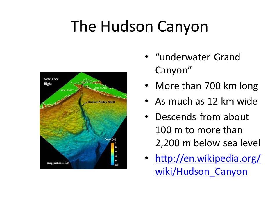 "The Hudson Canyon ""underwater Grand Canyon"" More than 700 km long As much as 12 km wide Descends from about 100 m to more than 2,200 m below sea level"