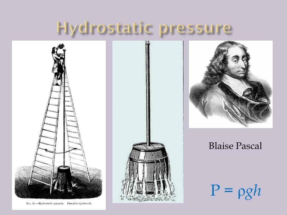 Pressure in liquid/gas is isotropic.