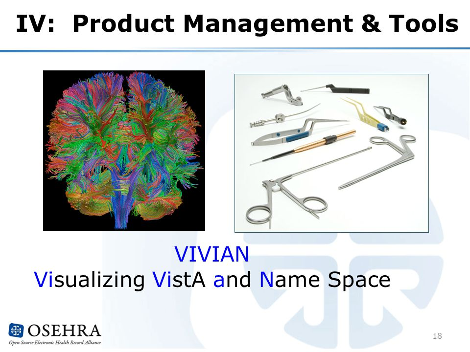 IV: Product Management & Tools 18 VIVIAN Visualizing VistA and Name Space
