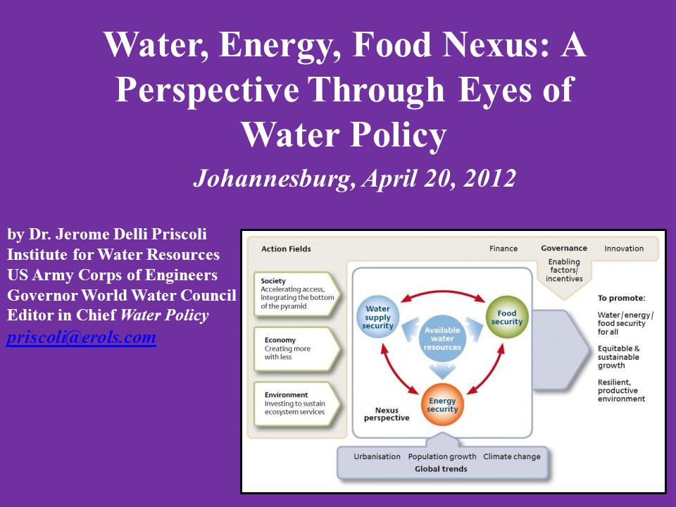 Water, Energy, Food Nexus: A Perspective Through Eyes of Water Policy Johannesburg, April 20, 2012 by Dr.
