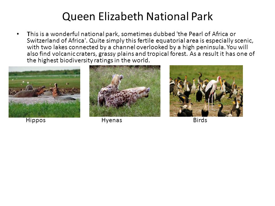 Queen Elizabeth National Park This is a wonderful national park, sometimes dubbed the Pearl of Africa or Switzerland of Africa .