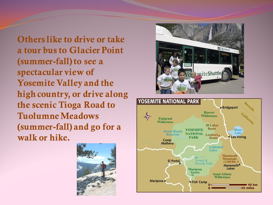 Others like to drive or take a tour bus to Glacier Point (summer-fall) to see a spectacular view of Yosemite Valley and the high country, or drive along the scenic Tioga Road to Tuolumne Meadows (summer-fall) and go for a walk or hike.
