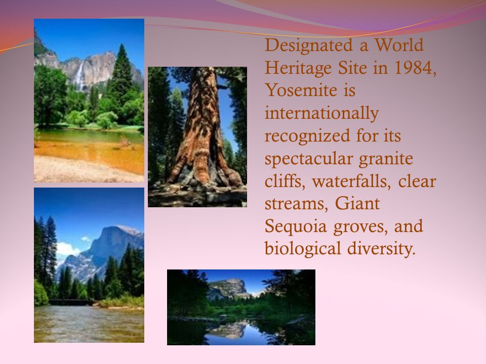 Designated a World Heritage Site in 1984, Yosemite is internationally recognized for its spectacular granite cliffs, waterfalls, clear streams, Giant Sequoia groves, and biological diversity.