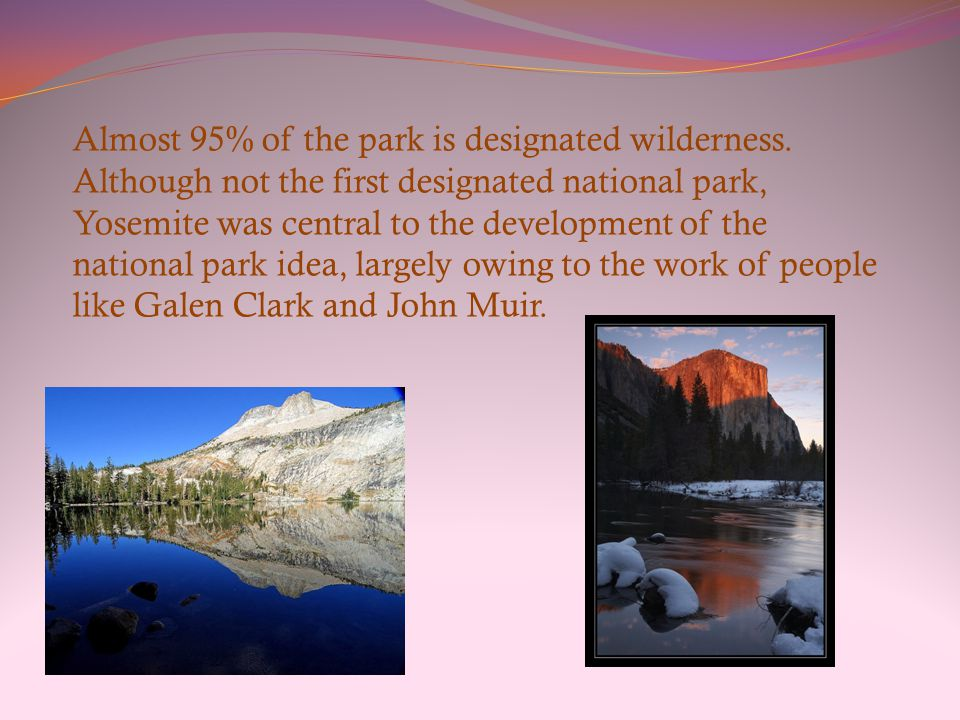 Yosemite is one of the largest and least fragmented habitat blocks in the Sierra Nevada, and the park supports a diversity of plants and animals.