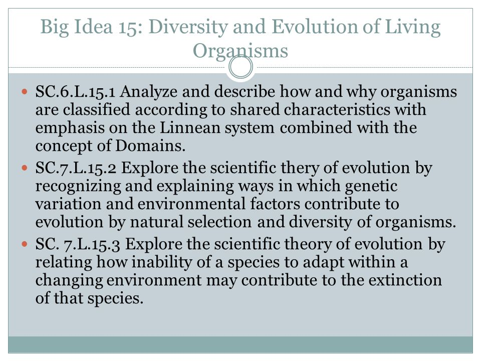 Big Idea 15: Diversity and Evolution of Living Organisms SC.6.L.15.1 Analyze and describe how and why organisms are classified according to shared cha