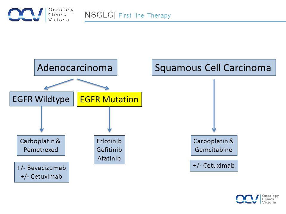 AdenocarcinomaSquamous Cell Carcinoma Carboplatin & Pemetrexed EGFR Mutation EGFR Wildtype Carboplatin & Gemcitabine Erlotinib Gefitinib Afatinib NSCLC| First line Therapy +/- Bevacizumab +/- Cetuximab