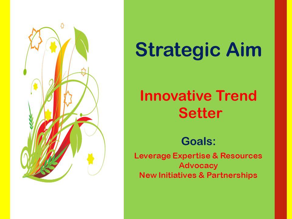 Strategic Aim Optimize Human Resources Goals: Enhanced Training & Education Capacity Building Building Relationships