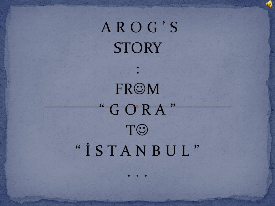 A R O G ' S STORY : FR M G O R A T İ S T A N B U L ...