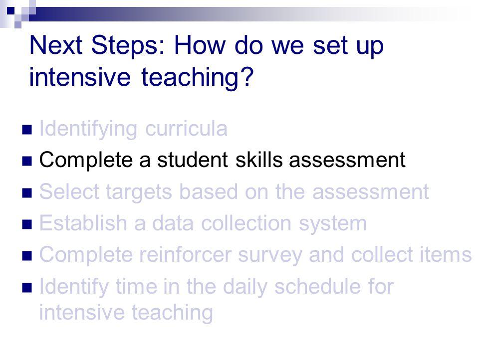 Next Steps: How do we set up intensive teaching.