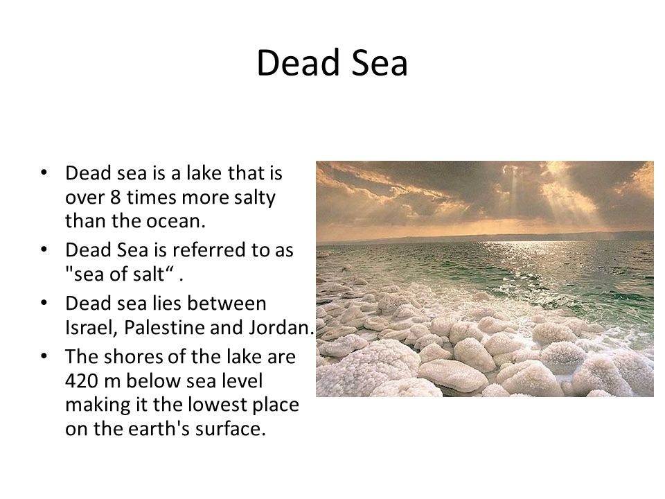 Dead Sea Dead sea is a lake that is over 8 times more salty than the ocean.