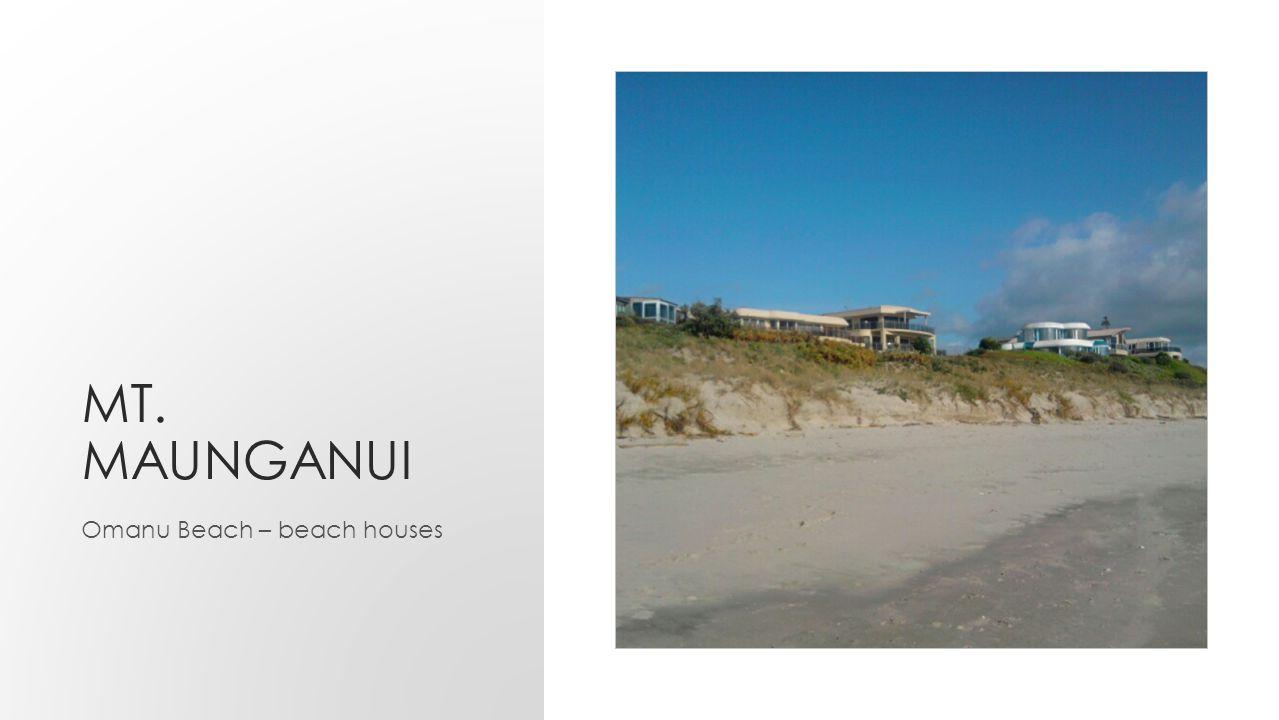 MT. MAUNGANUI Omanu Beach – beach houses